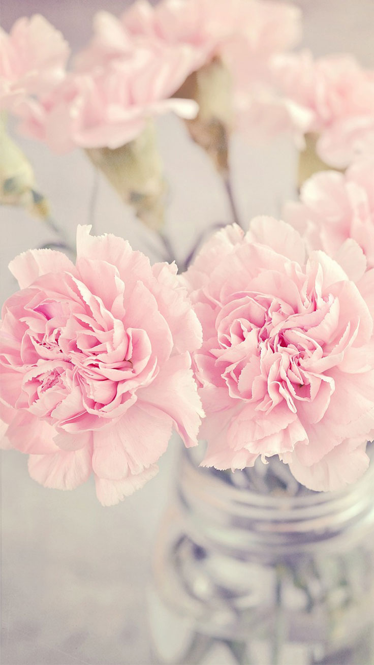 Pink peonies iphone wallpaper collection preppy wallpapers vase with pink peonies download more pink floral iphone wallpapers at blossomcases mightylinksfo Choice Image