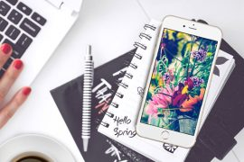27 Floral iPhone 7 Plus Wallpapers for a Sunny Spring