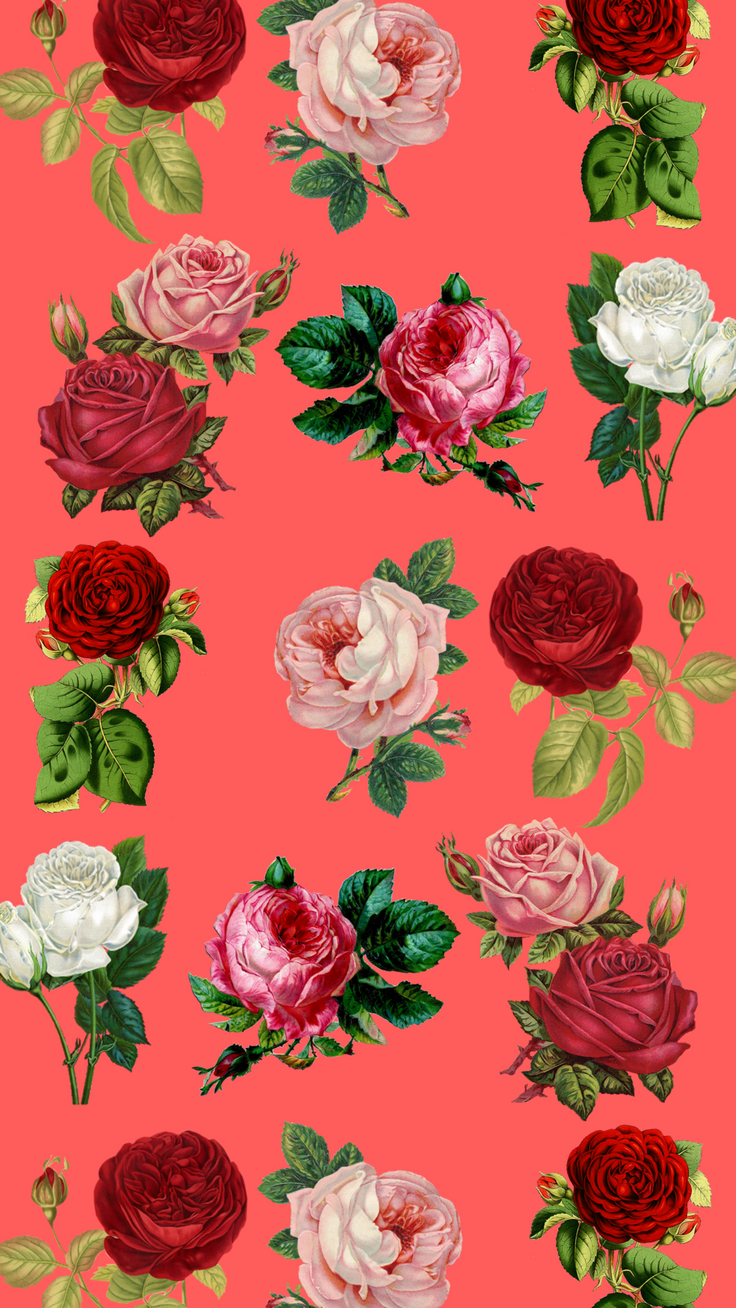 7 Pretty Floral iPhone 8 & 8 Plus HD Wallpapers | Preppy ...