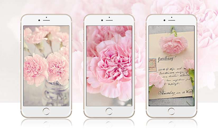 Pink Peonies IPhone Wallpaper Collection