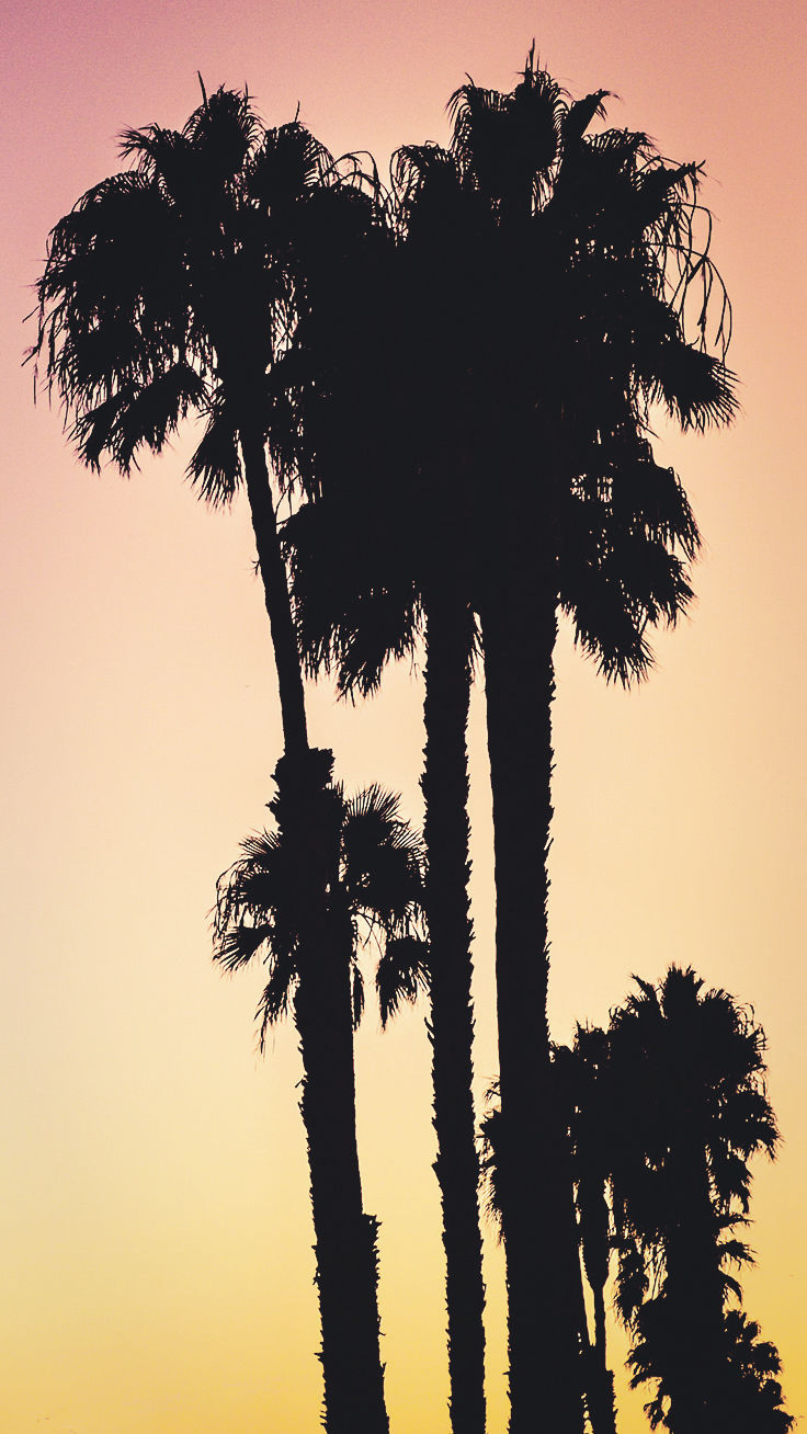 Summer Sunset iPhone Wallpaper ★ Download it at www.preppywallpapers.com
