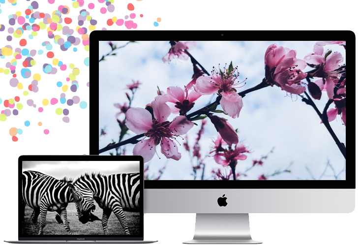 Pick a new Mac wallpaper every day with Setapp's awesome Wallpaper Wizard