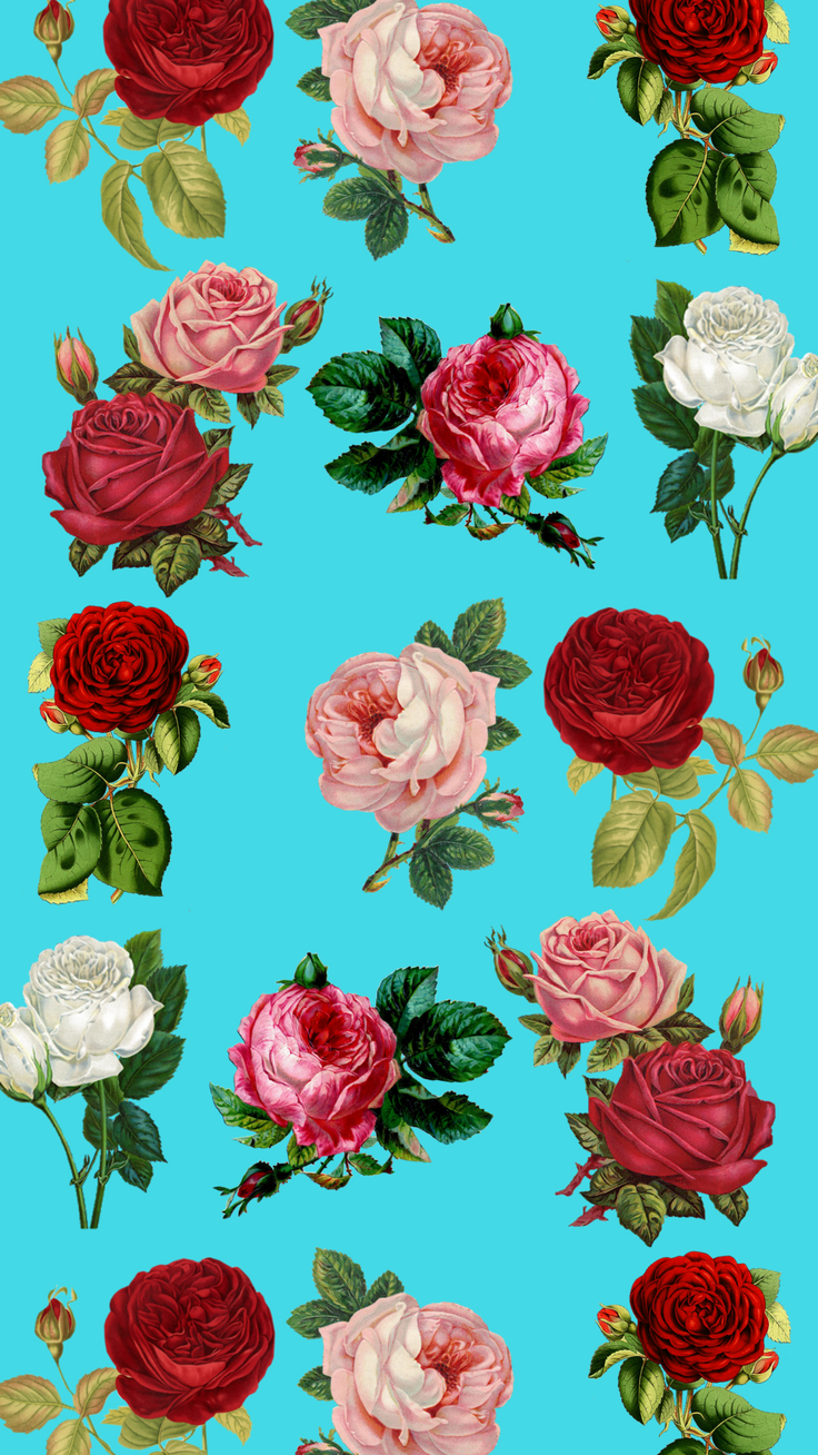 Blue Roses iPhone 8 wallpaper