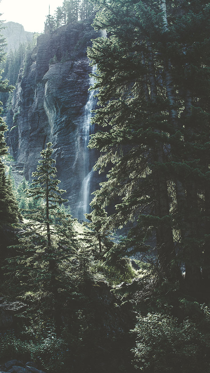 Bringing The Forest To You With 9 Free Iphone X Wallpapers Preppy