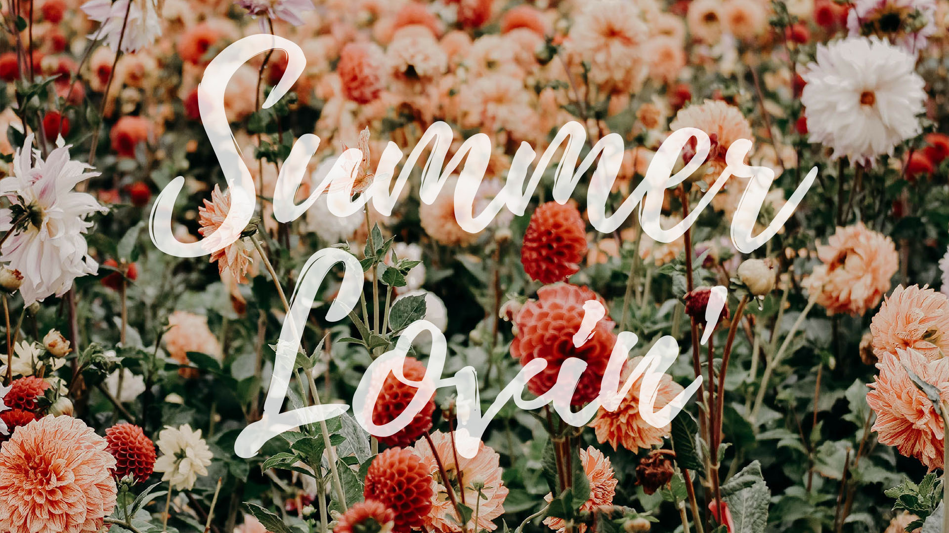 Summer Lovin' Quote Desktop + Mac Wallpaper by preppywallpapers.com