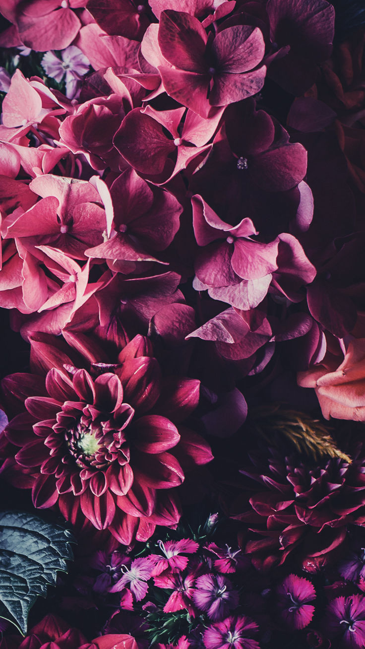 Floral iPhone Wallpapers by PreppyWallpapers