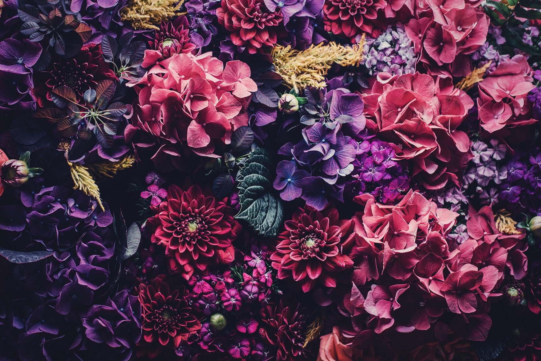 Floral iPhone Wallpaper Collection by PreppyWallpapers
