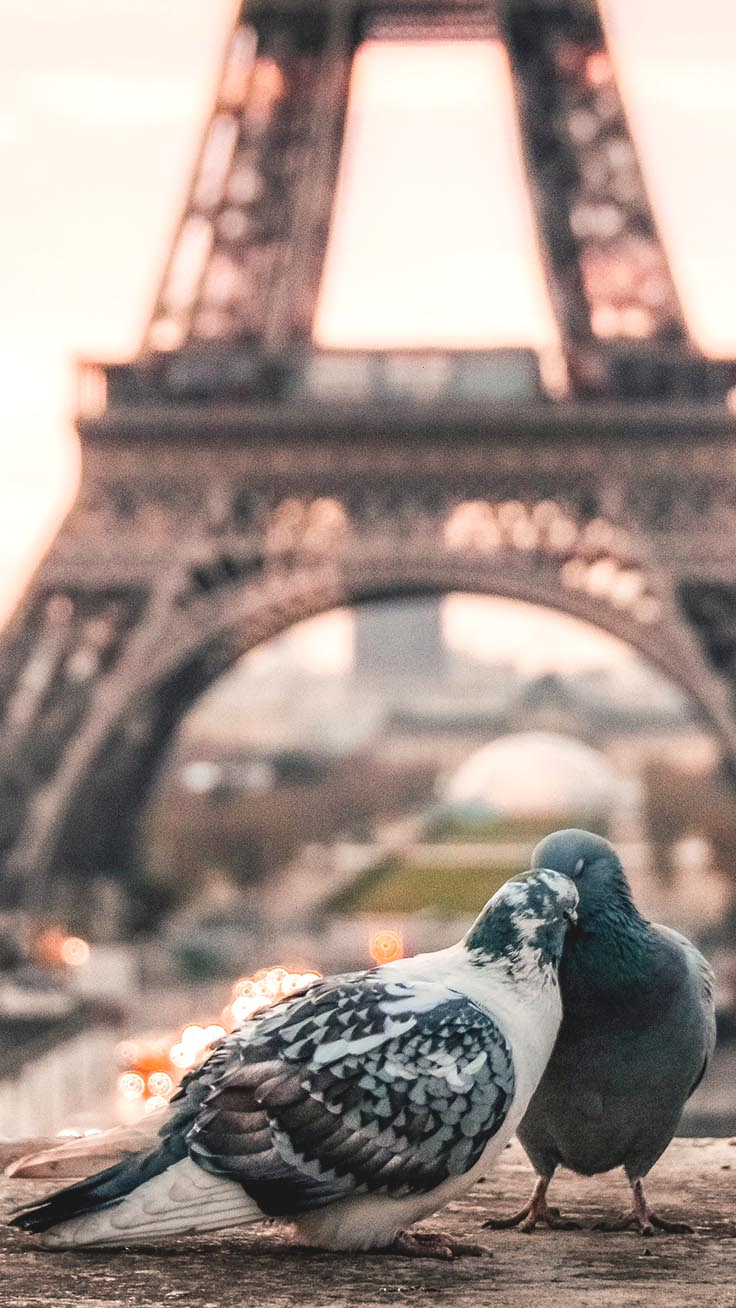 Paris iPhone Wallpapers by Preppy Wallpapers