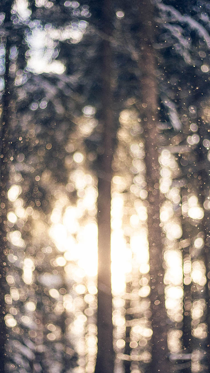 13 x Winter Landscapes iPhone Wallpapers by Preppy Wallpapers