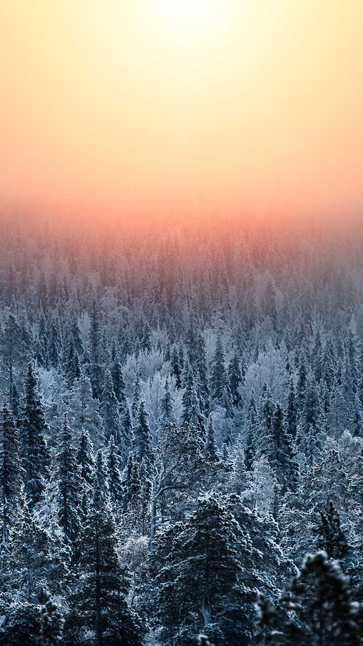 Winter World iPhone Wallpapers by Preppy Wallpapers